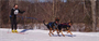 A man skijoring with his dog in Blackwater reservoir. The Blackwater Dam offers visitors approximately 3,600 acres of land and water for recreational opportunities all year round. The pristine environment includes a meandering eight mile stretch of the Blackwater River.